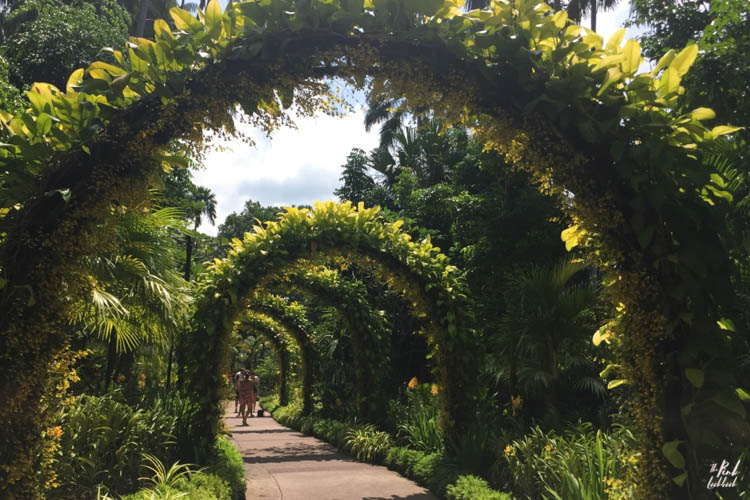 National Orchid Garden Arches