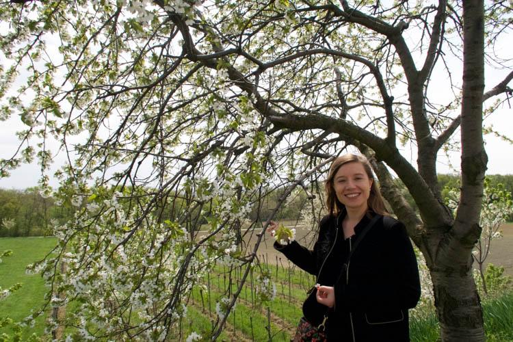 Interview Andrea Strohmayer Kirschengenussquelle Breitenbrunn