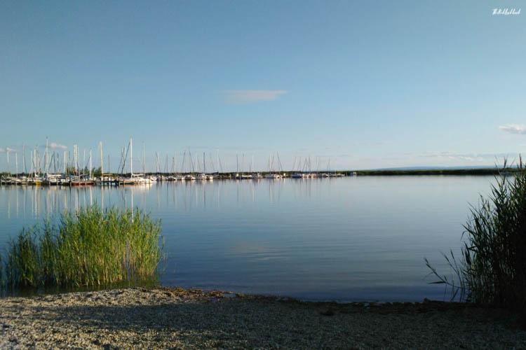 Neusiedler See View Sailing Boats