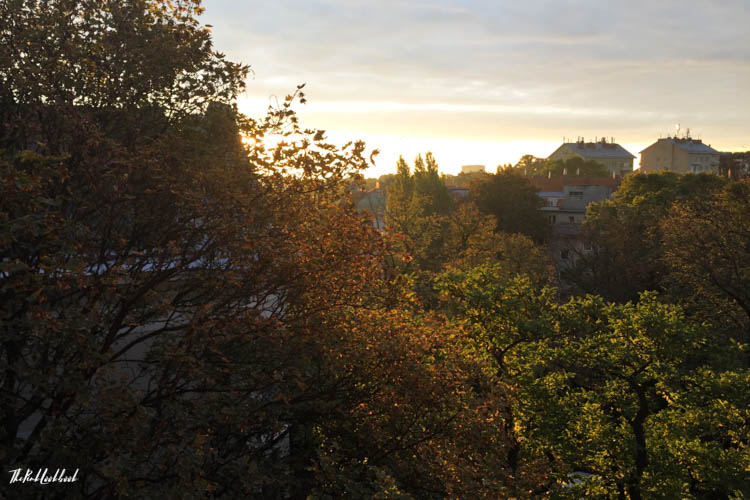 Things to Do in Vienna in Autumn Sunrise