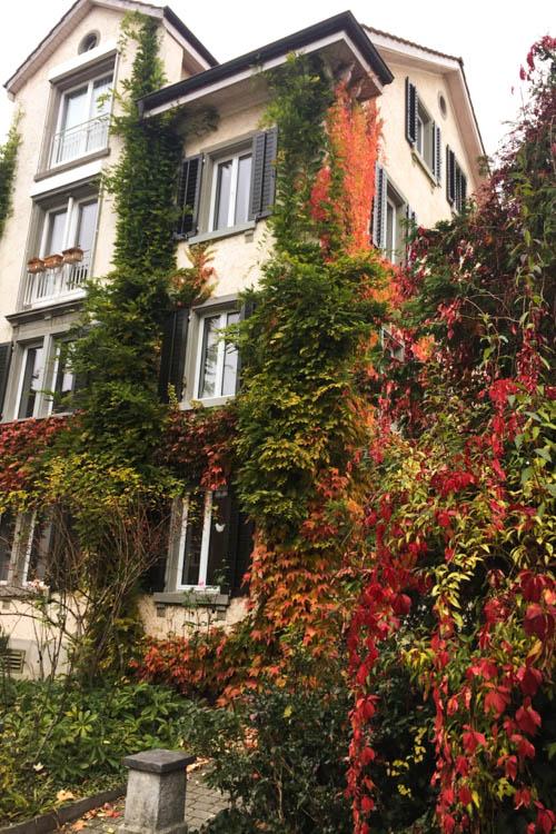 Winterthur Switzerland Day Trip from Zurich Autumn Leaves