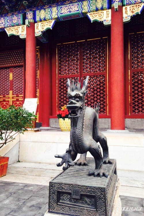 My Top 10 Tips for Your First Trip to China Mushu