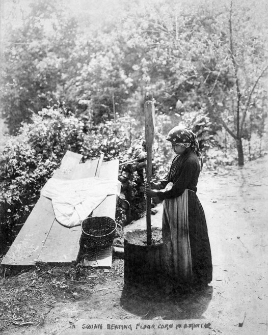 """CHEROKEE WOMAN GRINDING CORN IN A MORTAR. THIS PHOTOGRAPH WAS TAKEN BY THE PHOTOGRAPHER BROCK AT THE REQUEST OF FRED OLDS ON A TRIP TO CHEROKEE, NORTH CAROLINA IN 1908. ON THIS TRIP OLDS WAS COLLECTING BASKETS AND OTHER ARTIFACTS FROM THE CHEROKEE INDIANS FOR HIS OWN PERSONAL COLLECTION AND ALSO FOR THE HALL OF HISTORY IN RALEIGH, NORTH CAROLINA. A 1914 PUBLICATION, """"GUIDE TO THE HALL OF HISTORY OF NORTH CAROLINA"""" PREPARED BY FRED A. OLDS AND PUBLISHED BY THE NORTH CAROLINA HISTORICAL COMMISSION MENTIONS THAT A SPECIAL STUDY WAS MADE OF THE CHEROKEE INDIANS AND THAT THE PHOTOGRAPHS TAKEN WERE EXHIBITED IN THE HALL OF HISTORY."""