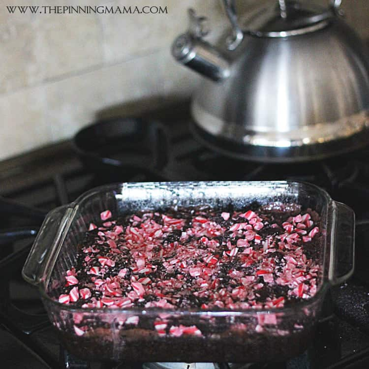Peppermint Brownies Recipe -- Click here