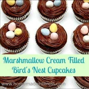 birdnest_cupcakes_featured-300x300