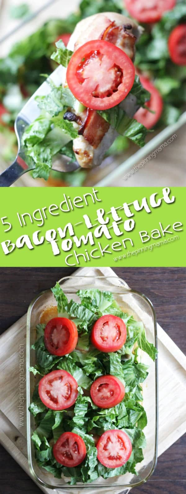 BLT Chicken Bake - Easy week night dinner recipe. Only 5 ingredients and minutes of prep to a hot, fresh and DELICIOUS chicken dinner baked in a casserole dish. A new twist on the classic bacon, lettuce, and tomato flavor combo!