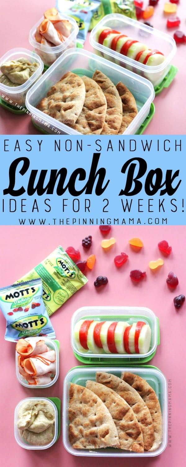 Hummus & Pita lunch box idea for kids! Just one of 2 weeks worth of non-sandwich school lunch ideas that are fun, healthy, and easy to make! Grab your lunch bag or bento box and get started!