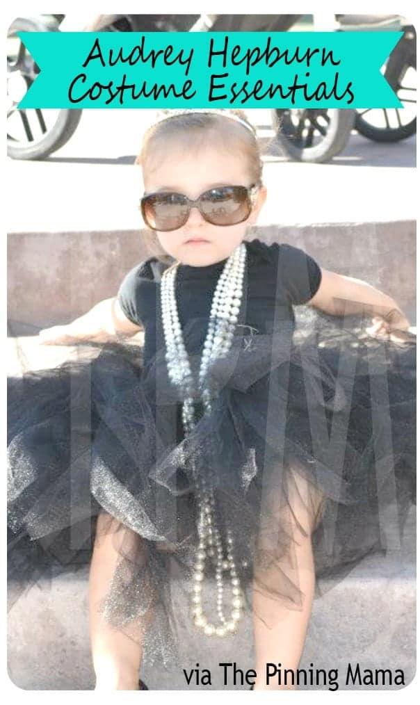 10+ Adorable Tutu Halloween Costumes: Audrey Hepburn   www.thepinningmama.com