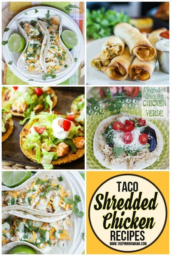 Shredded Chicken Tacos recipes