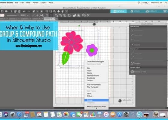 Compound Path and Groups in Silhouette Studio