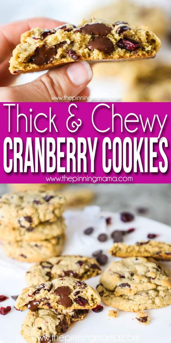 Thick and Chewy Cranberry Chocolate Chip Cookies