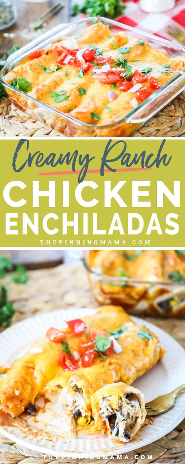 Creamy Ranch Chicken Enchiladas are loaded with flavor and perfect for a weeknight meal.