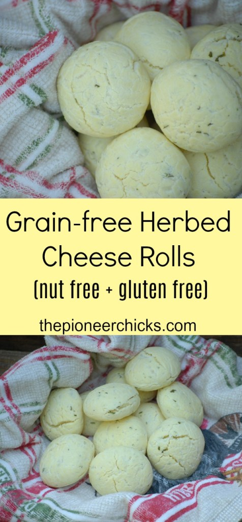 Grain-free Herbed Cheese Rolls- These delicious grain-free, cheesey dinner rolls are flavored with basil and rosemary and also nut and gluten free!