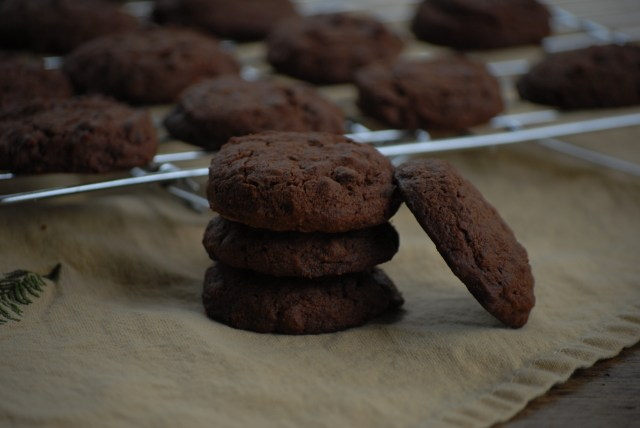 Grain-free Double Chocolate Cookies- These double chocolate cookies are grain-free, gluten free, nut free, and egg free. It is also a multi-purpose recipe!