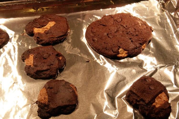 Natural Harvest Soggy Biscuit Oven Complete