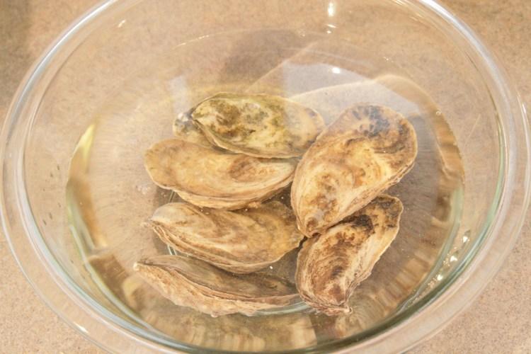 Natural Harvest Wash Oyster