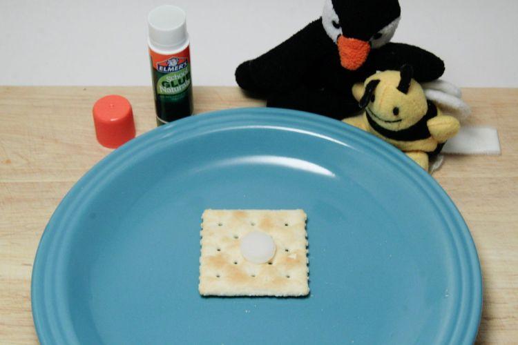 Glue Stick Taste Test Elmers Naturals