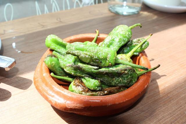 padron peppers, Bellita, Bristol