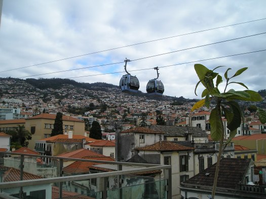 The picture shows the cable car above the houses
