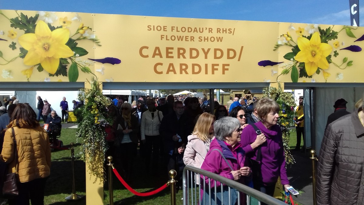 Cardiff Review of the RHS flower show