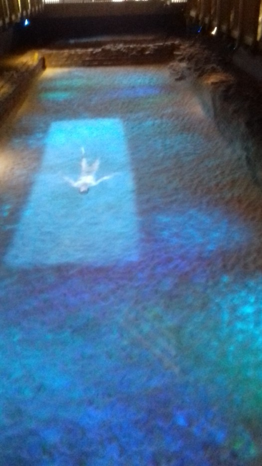 A holograph of a swimmer in the baths