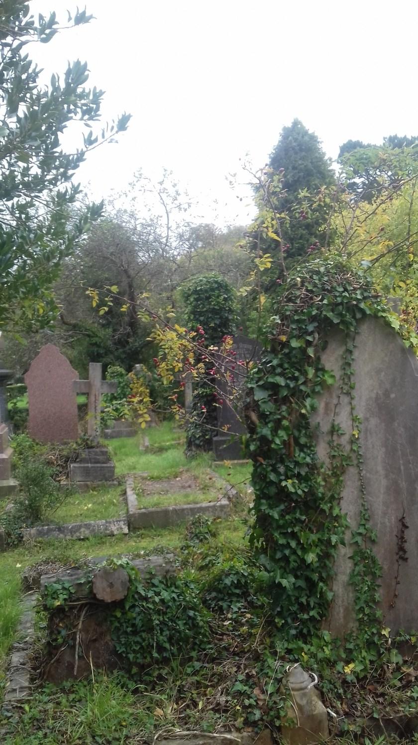 Graves in Arnos vale cemetery