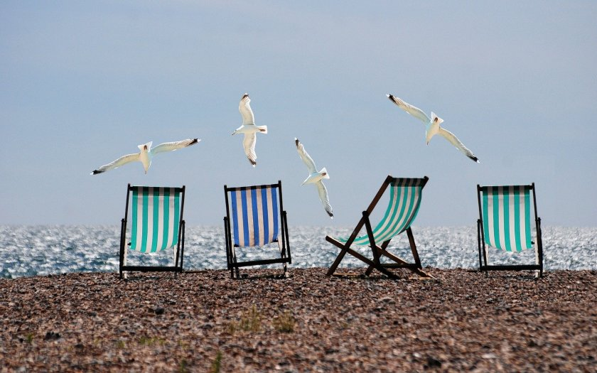 Deckchairs and seagulls on the beach