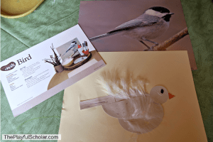 Making a Shape Bird – Invitation to Create