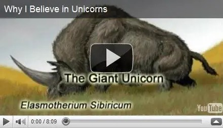 Why I Believe in Unicorns