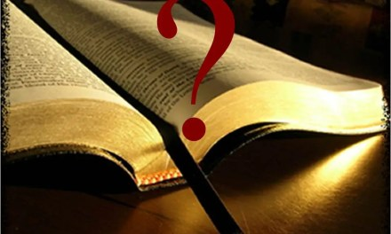 What are the most famous/important questions in the Bible?