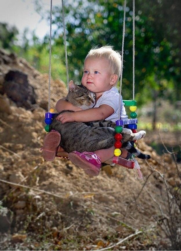 cea-mai-draguta-imagine-cu-pisica