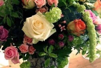 100 cele mai frumoase imagini cu flori