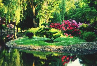 10 tipuri de gradini si caracteristici