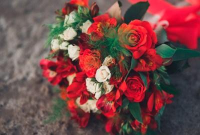Poze cu flori (28 imagini) download