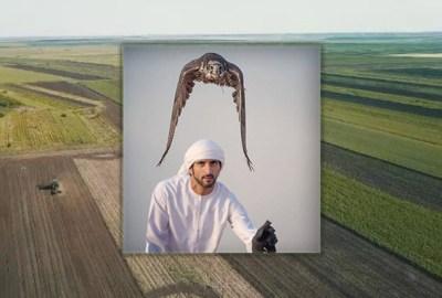 De ce au cumpărat șeicii arabi teren agricol în Insula Mare a Brăilei, dar și în alte părți ale României?