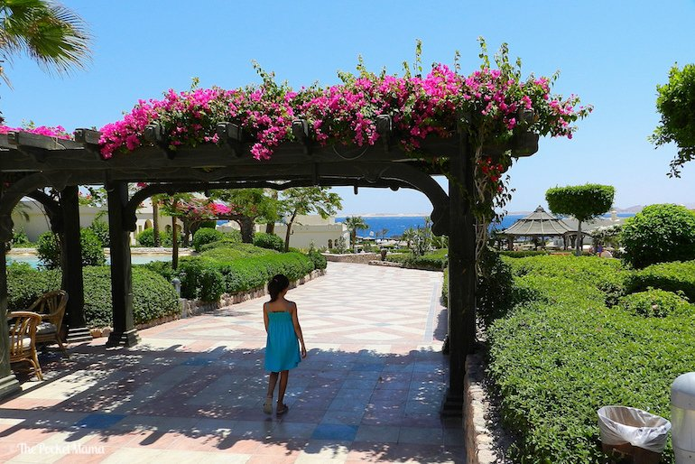 vacanze a Sharm El Sheik con i bambini