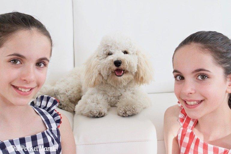 cosa significa adottare un cucciolo