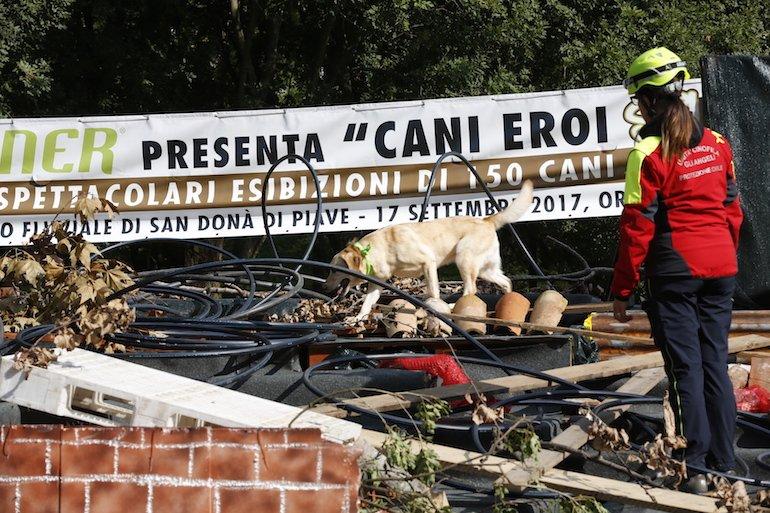 Trainer Cani Eroi Show - salvataggio dalle macerie