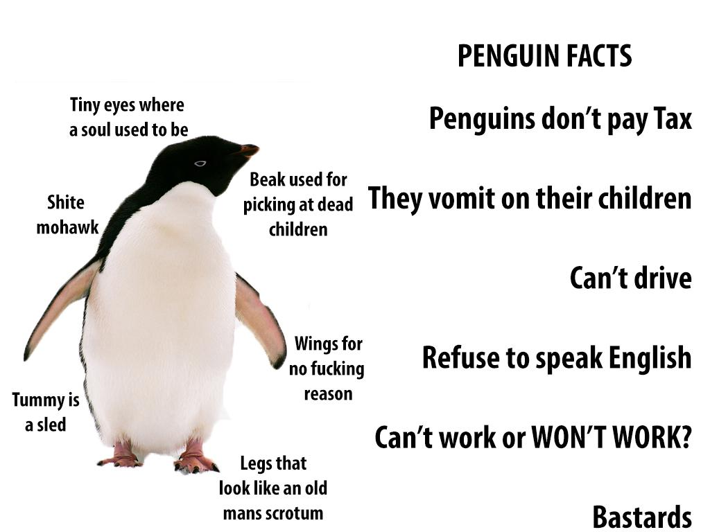 Handy Penguin Facts For Penguin Haters An Infographic