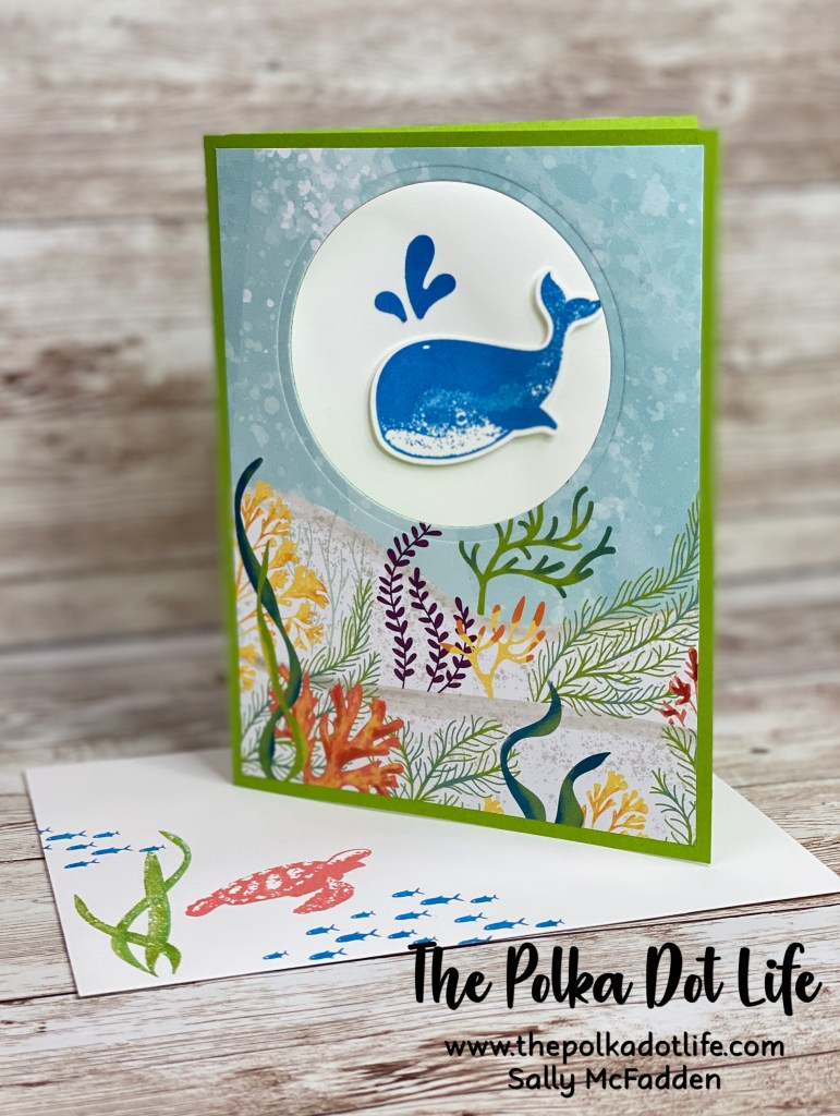 The is a greeting card created using the Whale Of A Time suite of products by Stampin' Up.