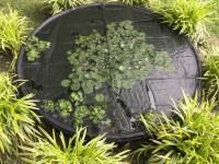 Pond Netting | Fish Tank Covers