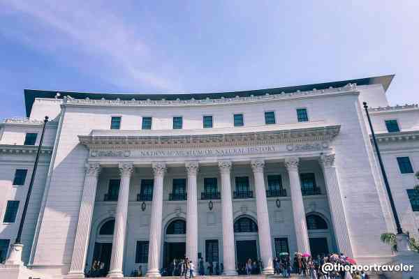 National Museum Of Natural History In Manila Guide