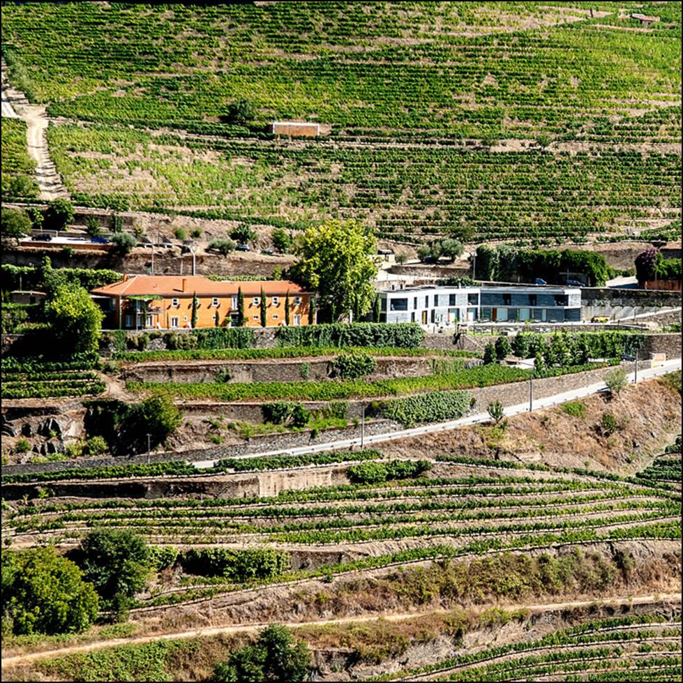 The portugal times - Quinta do vallado ...