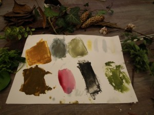 Wild Paint and Organic Dye Making Day at The Potters Barn