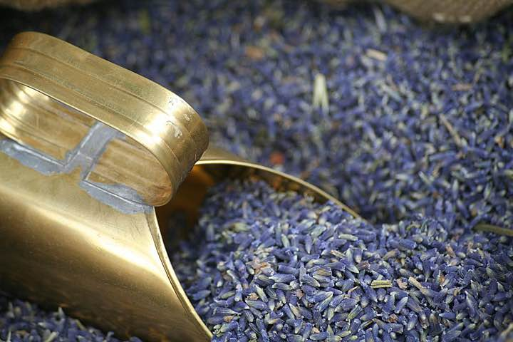 Show 10: Lavender – Perfume With A Medicinal Punch