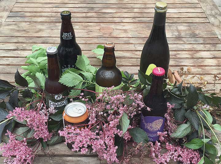 Show 20: Tapping The Keg–Herbalists Rediscover Beers Of Olde