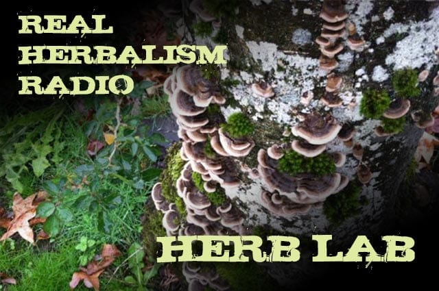 Show 47: Herb Lab With Mushrooms, News, Herbal 101 And A Preview