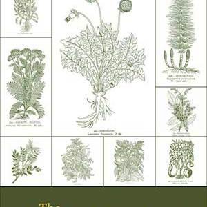 The Pocket Herbal