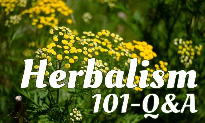 Show 101: Health Questions For The Herbal Experts