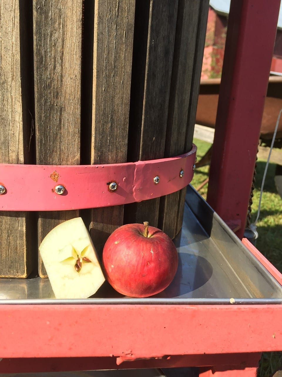 Apple Pressing As A Home Herbalist